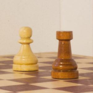 Занятия шахматами по интернету и наша методика преподавания